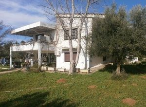 Detached House, Oropos