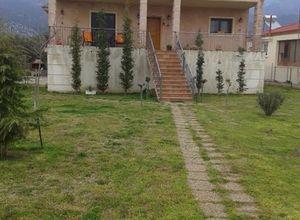 Μονοκατοικία προς πώληση Τοπείρο Τοξότες 120 τ.μ. Ισόγειο