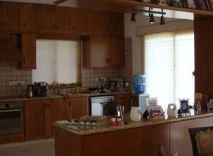 Μονοκατοικία προς πώληση Παλόδεια 180 τ.μ. Ισόγειο 3 Υπνοδωμάτια 3η φωτογραφία