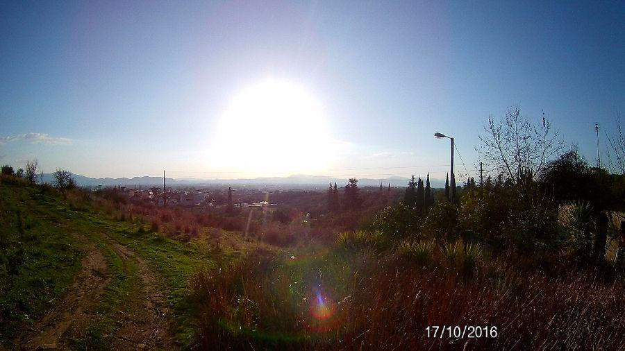 Photo 103800360
