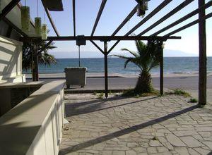 Επιχείρηση προς πώληση Ορφανό Παραλία Οφρυνίου 92 τ.μ. Ισόγειο