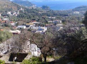 Μονοκατοικία προς πώληση Πάργα 100 τ.μ. Ισόγειο