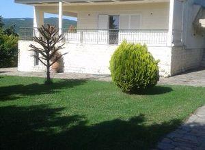 Μονοκατοικία προς πώληση Απολλώνια Νέα Απολλωνία 360 τ.μ. Ισόγειο