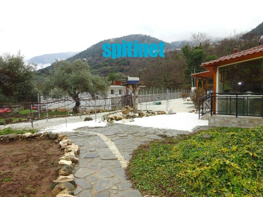 Photo 105090897