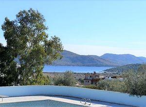 Sale, Villa, Agios Nikolaos (Anavissos)