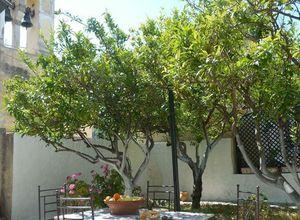 Μονοκατοικία για ενοικίαση Κέρκυρα Αχίλλειο 191 τ.μ. Ισόγειο
