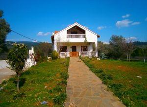 Μονοκατοικία προς πώληση Μεσσαπία Κυπαρίσσι 158 τ.μ. Ισόγειο