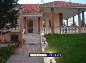 Detached House for sale Kato Kefalari (Doxato) 245 ㎡ 5 Bedrooms