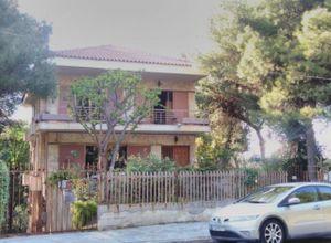Detached House, Politeia