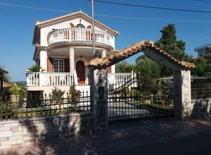 Detached House, Main town area