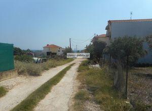 Sale, Land Plot, Kalives Poligirou (Poligiros)