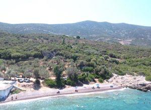 Sale, Land Plot, Archaia Epidavros (Epidavros)