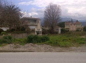 Sale, Land Plot, Agios Vasileios (Rio)