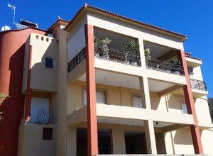 Διαμέρισμα προς πώληση Σάμος Πυθαγόρειο 630 τ.μ. Υπόγειο