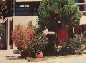 Μονοκατοικία προς πώληση Ερέτρια 350 τ.μ.