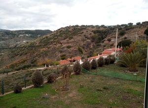 Detached House, Dionisos