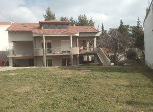 Detached House, Oreokastro