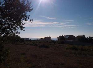 Land Plot, Triglia