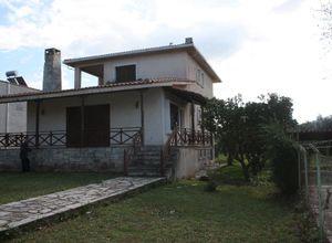 Διαμέρισμα προς πώληση Λόγγος (Αιγιάλεια) 250 τ.μ. 3 Υπνοδωμάτια