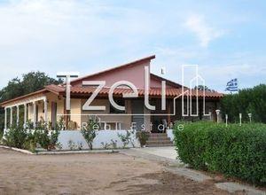 Μονοκατοικία προς πώληση Νιφοραίικα (Δυτικής Αχαΐας) 100 τ.μ. 3 Υπνοδωμάτια