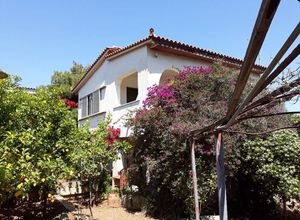 Sale, Detached House, Vravrona (Artemida (Loutsa))