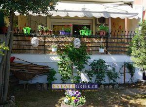 Διαμέρισμα προς πώληση Αμυγδαλεώνας (Φίλιπποι) 70 τ.μ. 2 Υπνοδωμάτια