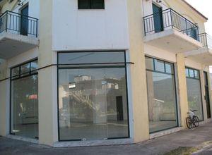 Διαμέρισμα για ενοικίαση Λέσβος - Καλλονή 73 τ.μ. 2 Υπνοδωμάτια