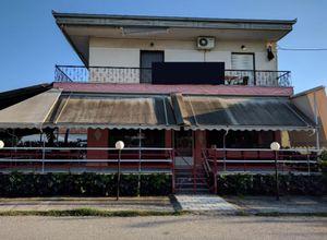 Μονοκατοικία προς πώληση Λόγγος (Εστιαιώτιδα) 165 τ.μ. 1 Υπνοδωμάτιο 2η φωτογραφία