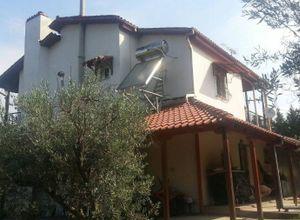 Διαμέρισμα, Νιγρίτα