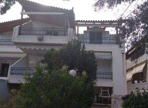 Rent, Apartment, Markopoulo (Rest of Attica)