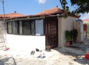 Detached House, Koroni