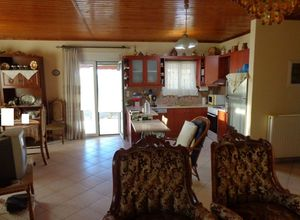 Μονοκατοικία προς πώληση Ελιά (Γούβες) 106 τ.μ. 2 Υπνοδωμάτια