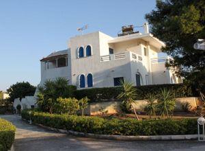 Μονοκατοικία προς πώληση Κάτω Σούνιο (Σούνιο) 399 τ.μ. Ισόγειο