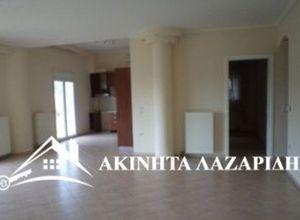 Rent, Apartment, Elaiones (Pylea)