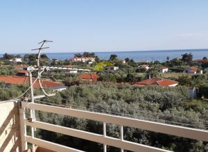 Real Estate Agency Kassandra Properties, Chalkidiki, Greece