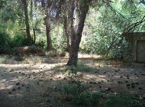 Land Plot, Kifissia