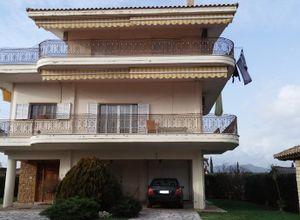 Μονοκατοικία προς πώληση Παναιτώλιο (Θεστιές) 176 τ.μ. 4 Υπνοδωμάτια