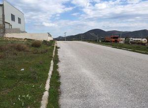 Οικόπεδο προς πώληση Κερατέα 3.332 τ.μ. Υπόγειο