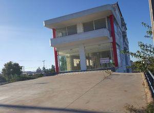 Κτίριο επαγγελματικών χώρων, Ακοβίτικα