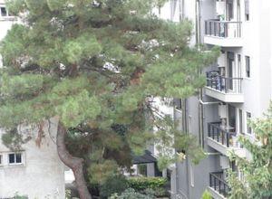 Apartment, Karampournaki