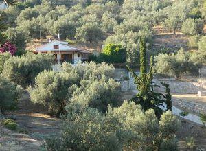 Sale, Detached House, Poros (Argosaronikos islands)