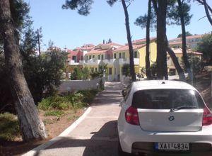 Διαμέρισμα για ενοικίαση Σάμος Καρλόβασι 38 τ.μ. Ισόγειο