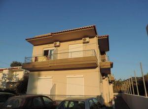 Διαμέρισμα για ενοικίαση Ρόδος Πεταλούδες 40 τ.μ. Ισόγειο