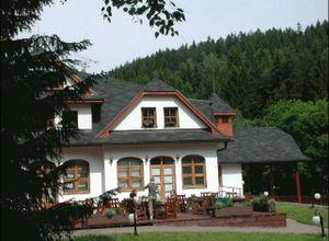 Ξενοδοχείο προς πώληση Υπόλοιπο Τσεχίας 730 τ.μ. Υπόγειο
