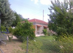Μονοκατοικία προς πώληση Νεάπολη 70 τ.μ. 2 Υπνοδωμάτια