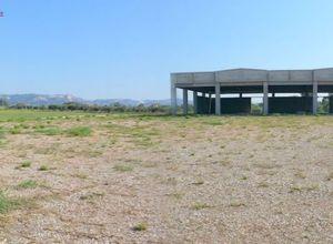 Κατάστημα προς πώληση Πύργος 600 τ.μ. Ισόγειο