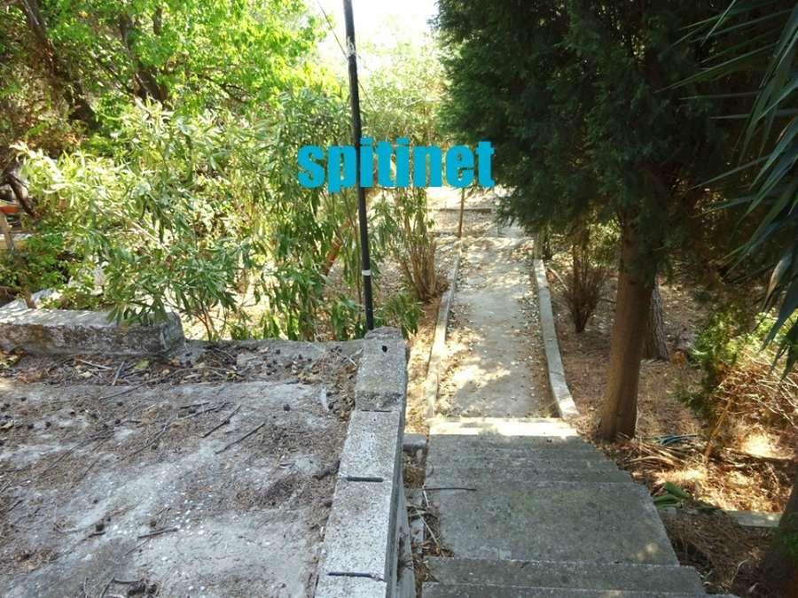 Photo 94677573