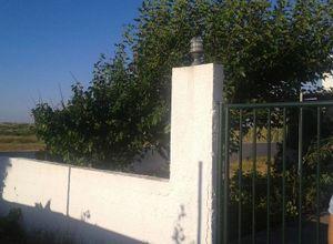 Μονοκατοικία προς πώληση Σκύρος Μώλος 75 τ.μ. Ισόγειο