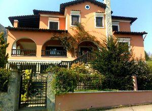 Μονοκατοικία προς πώληση Θεόδωρος Ζιάκας 186 τ.μ. Ισόγειο