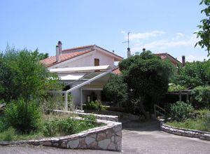 Μονοκατοικία προς πώληση Πολιτικά (Μεσσαπία) 77 τ.μ. 1 Υπνοδωμάτιο